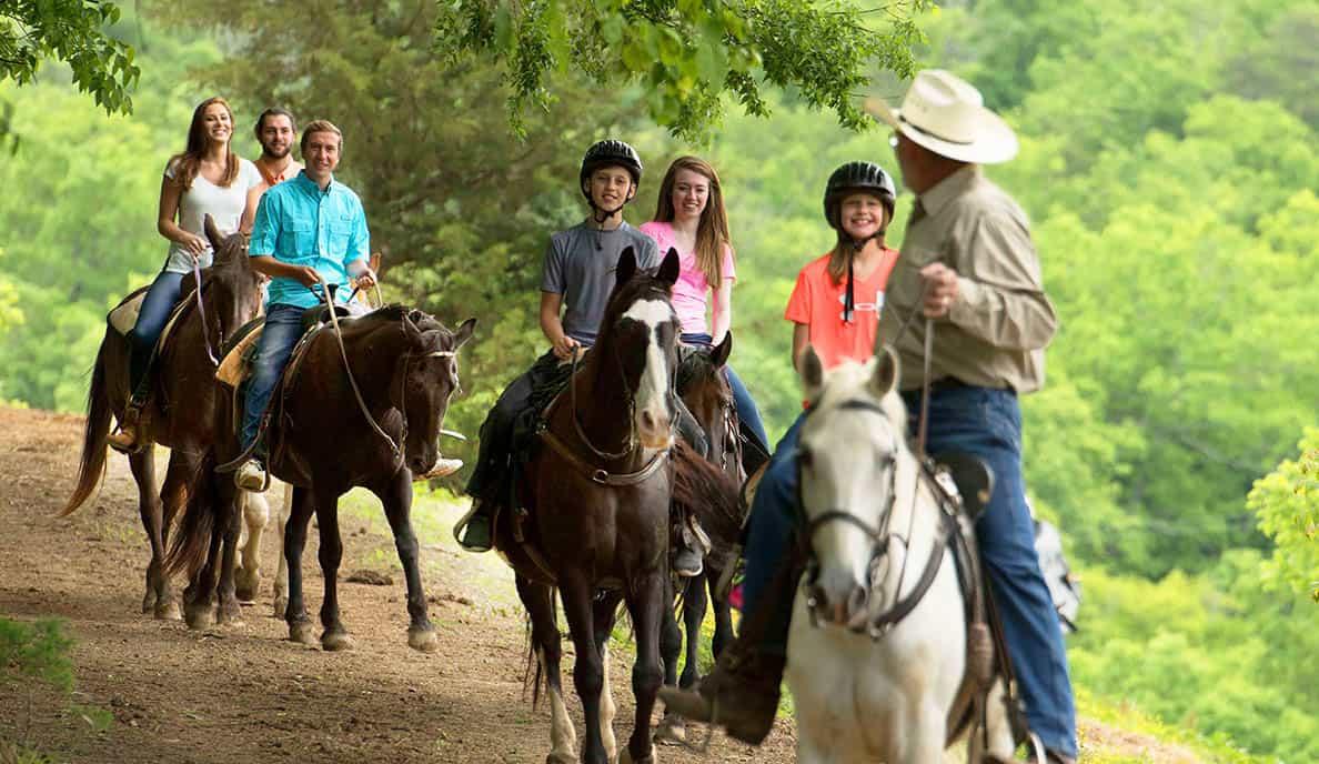 Horseriding Gallery 2 @1x
